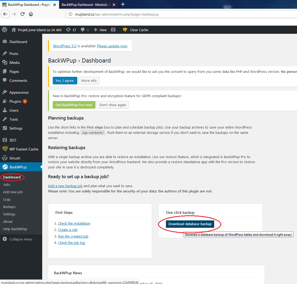 databázový soubor - Migrace WordPressu